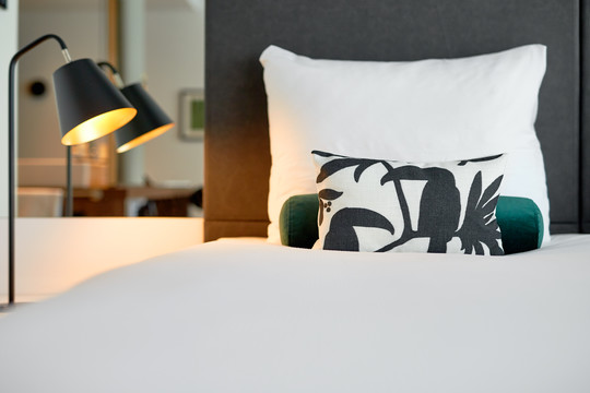 Pillow with Toucan print in Hotel Zaltbommel